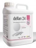 delfan 24